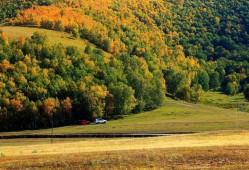 哪个坝上草原比较好玩?