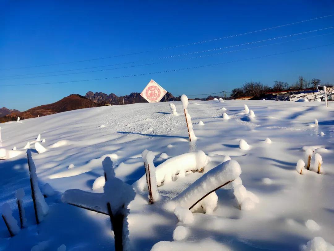 狼牙山滑雪场12月18日开园!试滑期门票70元!  第2张