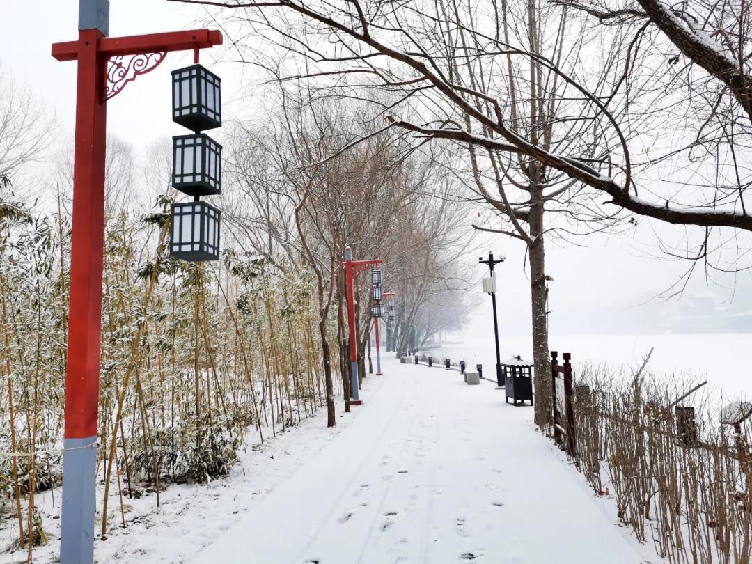 庆都山雪景图片  第21张