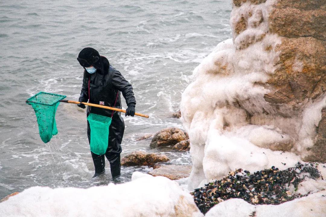 北戴河冬季最佳观赏地点  第11张