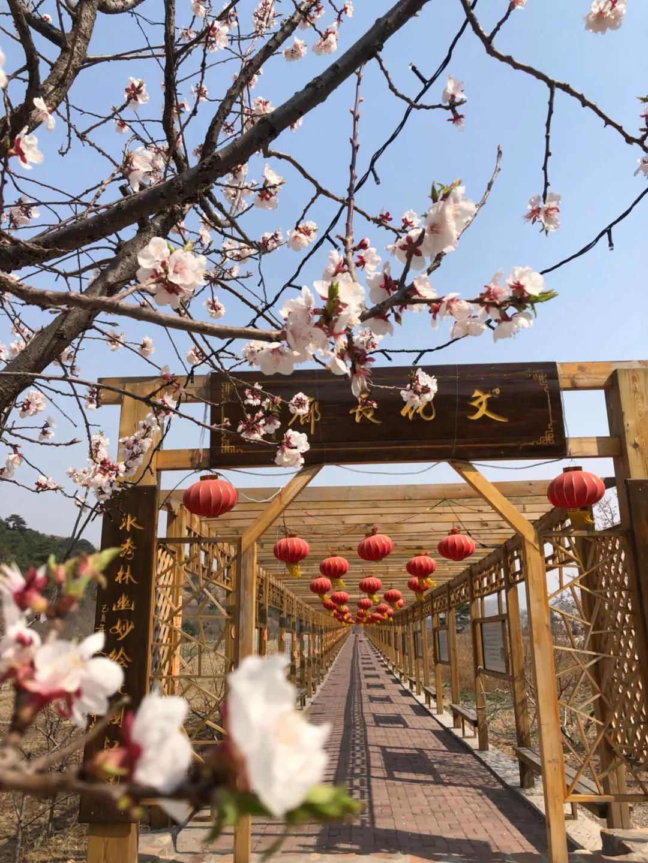 3月26日,迁安塔寺峪景区开园!  第2张