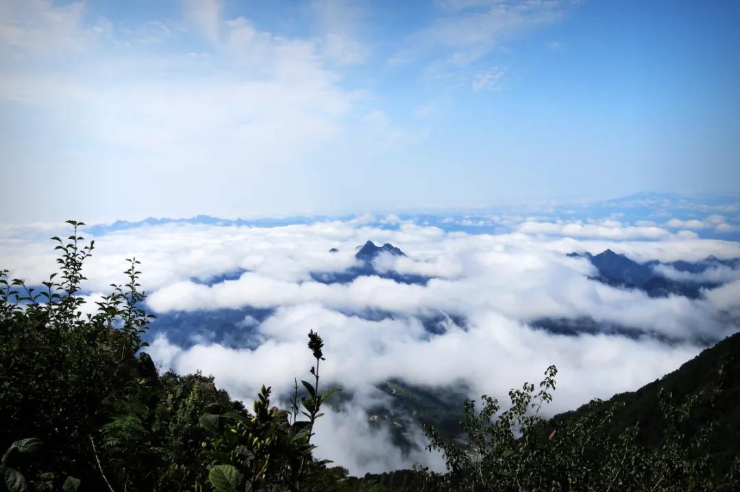 青山缭绕升云雾,美景只在野三坡!  第7张
