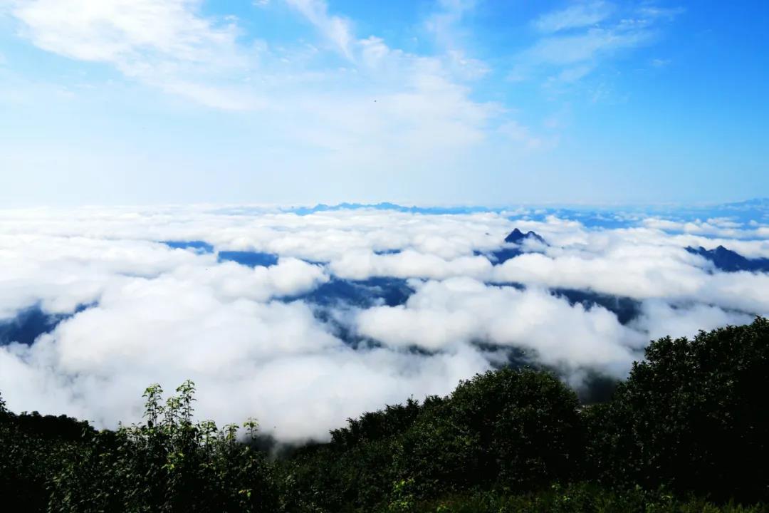 青山缭绕升云雾,美景只在野三坡!  第8张
