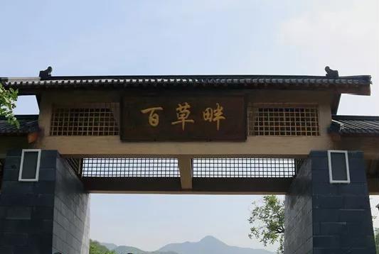 8月23日,野三坡百草畔景区开园营业啦!  第1张