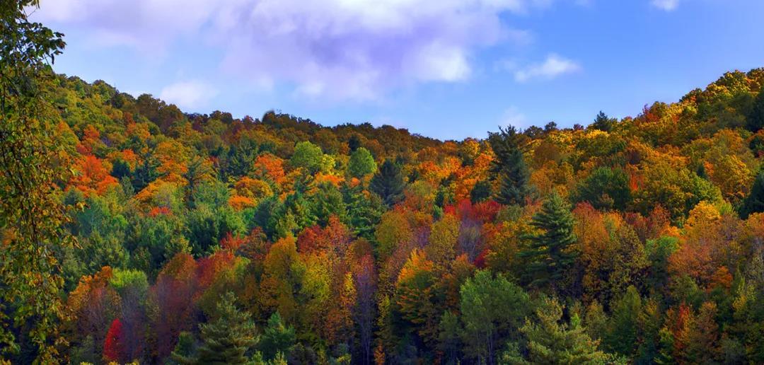 河北秋天哪里最美?这四个绝美赏秋目的地值得打卡  第4张
